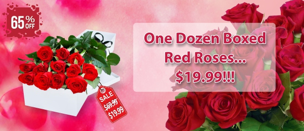 /Special-Occasions/Anniversary-Flowers/One-Dozen-Boxed-Red-Roses.html